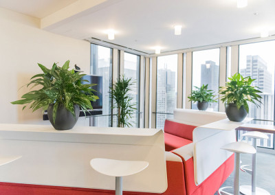 A modern office break room with red seating area and three white tables with medium sized Aglaonema plants in grey pots on each.