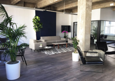 A loft office area with bright green indoor plants placed around modern furniture and gorgeous hardwood floors and concrete pillars.